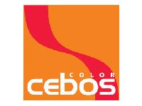 colore-torino-logo-2-01
